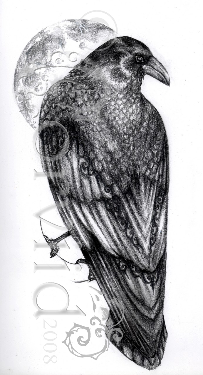 raven final watermark.jpg