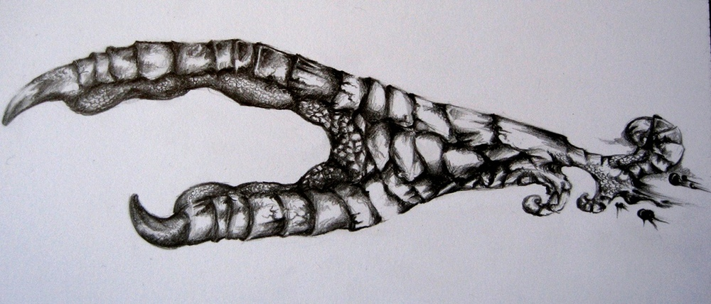 Crow claw hand tattoo