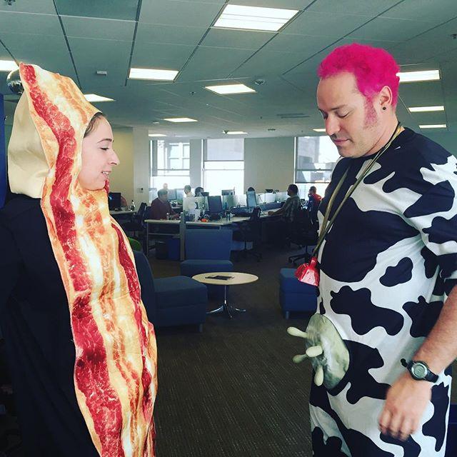 Bacon-Cow face off