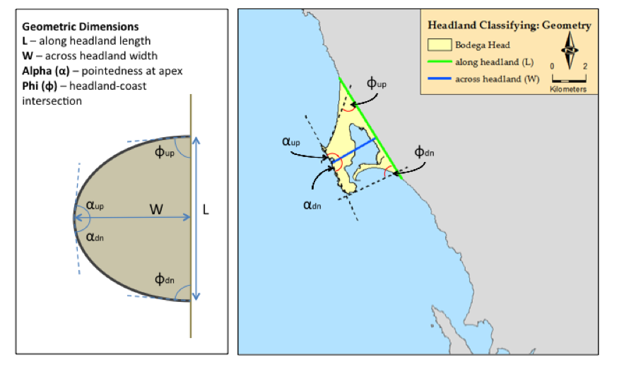 Figure 3. Schematic and Bodega Head example of geometric parameters gathered in ArcGIS to generate the database for classification of California headlands. Various tools were used to automate the calculations of length, angles, and size (perimeter and area). The difference between up and down angles emerged as an additional metric of the asymmetry of a headland (phi) and the pointedness of the apex angle (alpha).