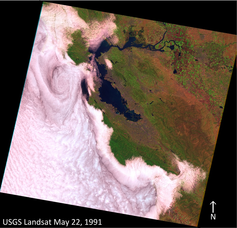 Figure 1.   Landsat, May 22, 1991   The Landsat image of May 22, 1991 shows the marine stratus and stratocumulus cloud layer that moved into the San Francisco Bay-Delta and Monterey Bay. Several cloud patterns can be seen in this image: the eddy-like spiral to the west of the Golden Gate, the darker linear cloud feature that parallels the coast down to Monterey Bay, and fog funneling from Monterey Bay inland. Researchers are using synoptic meteorology, aerosol chemistry, cloud thermodynamics, microphysics, and physical oceanography to better understand the processes behind these patterns. This research will improve the representation of clouds in global circulation and climate models.