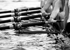 rowing-w-coxswain-foreground-hands-eight-mens-team-42562317.jpg