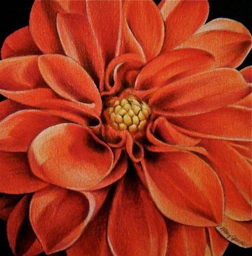 "A Dahlia for Karen, 5"" x 5"" by Mary Jones Easley"