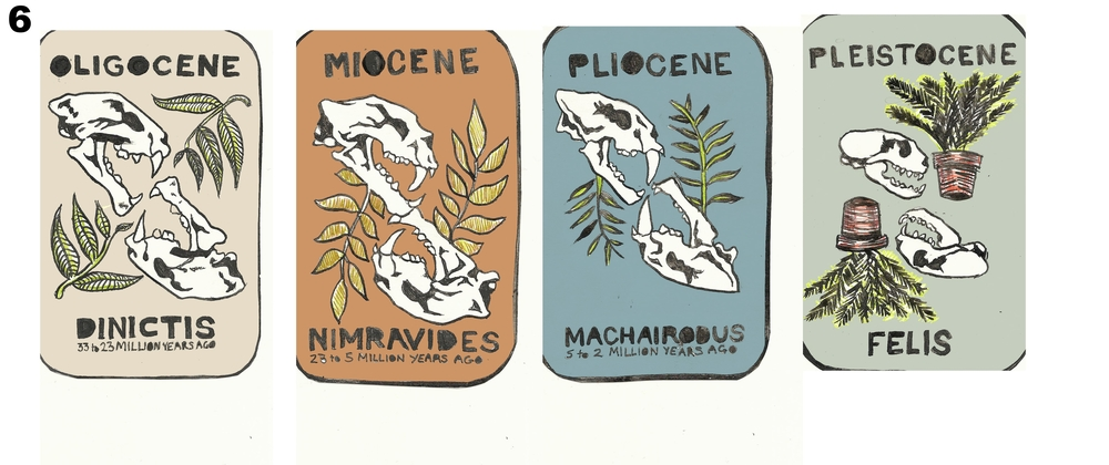 Felidae Cards - Chloe Bulpin