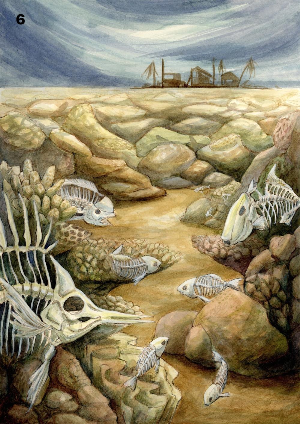 Ocean Acidification - Hsin Chen