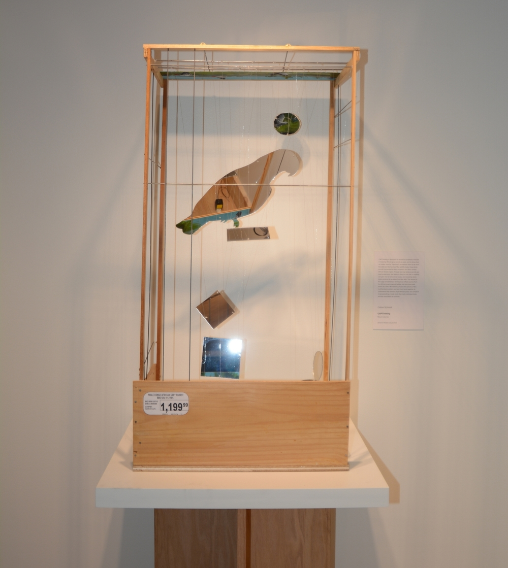 Celine Schmidt CAPTIVating Parrots Sculpture: Mixed materials, 30 x 30 x 30 in. The mirrors in the cage and bird toys of this piece reflect scenes from the African Grey's natural habitat, but only one small shard at a time.
