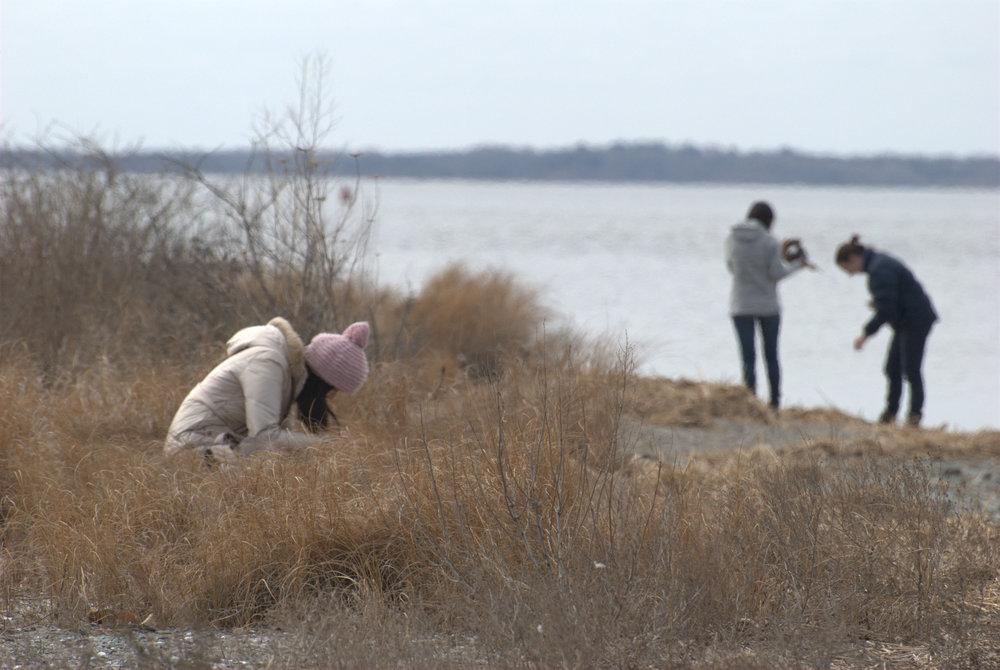 Salt Marsh visit Jacob's Point Mar 19, 2014 12-056.jpg