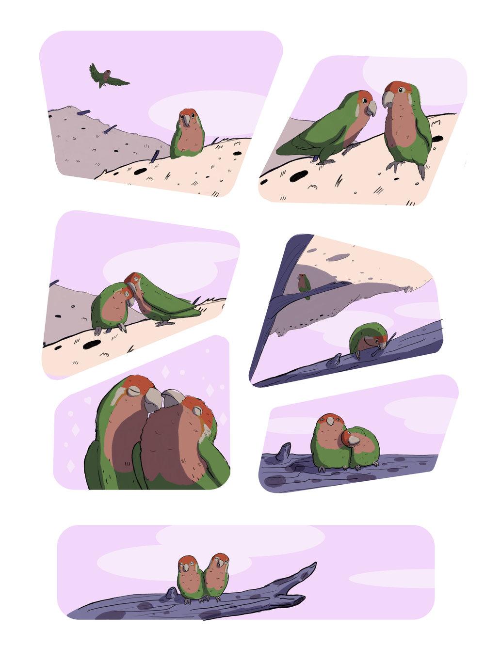Alex S lovebird comic page03.jpg