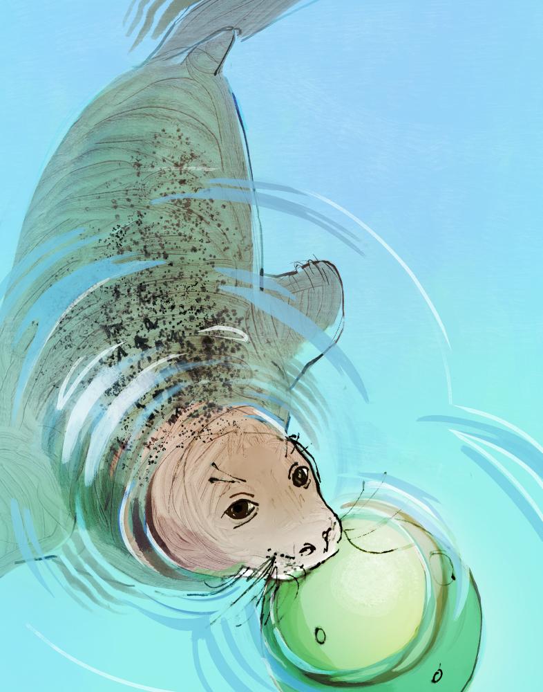 Aquarium03.png