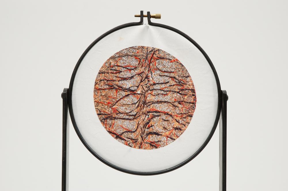 Cerebrum 2