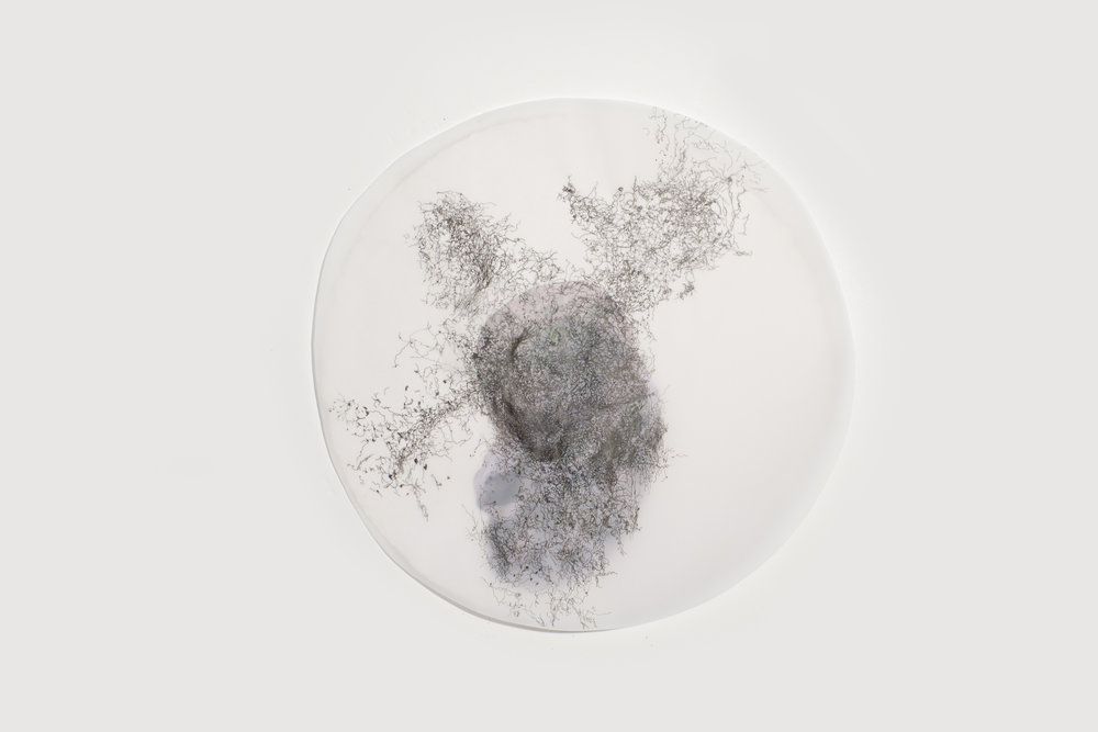 """In the Scale of Things 7 (detail)   ink, collage, on vellum   12""""diameter   2010-2011"""