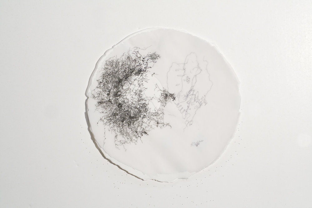 """In the Scale of Things 3   ink, collage, on vellum   12""""diameter   2010-2011"""