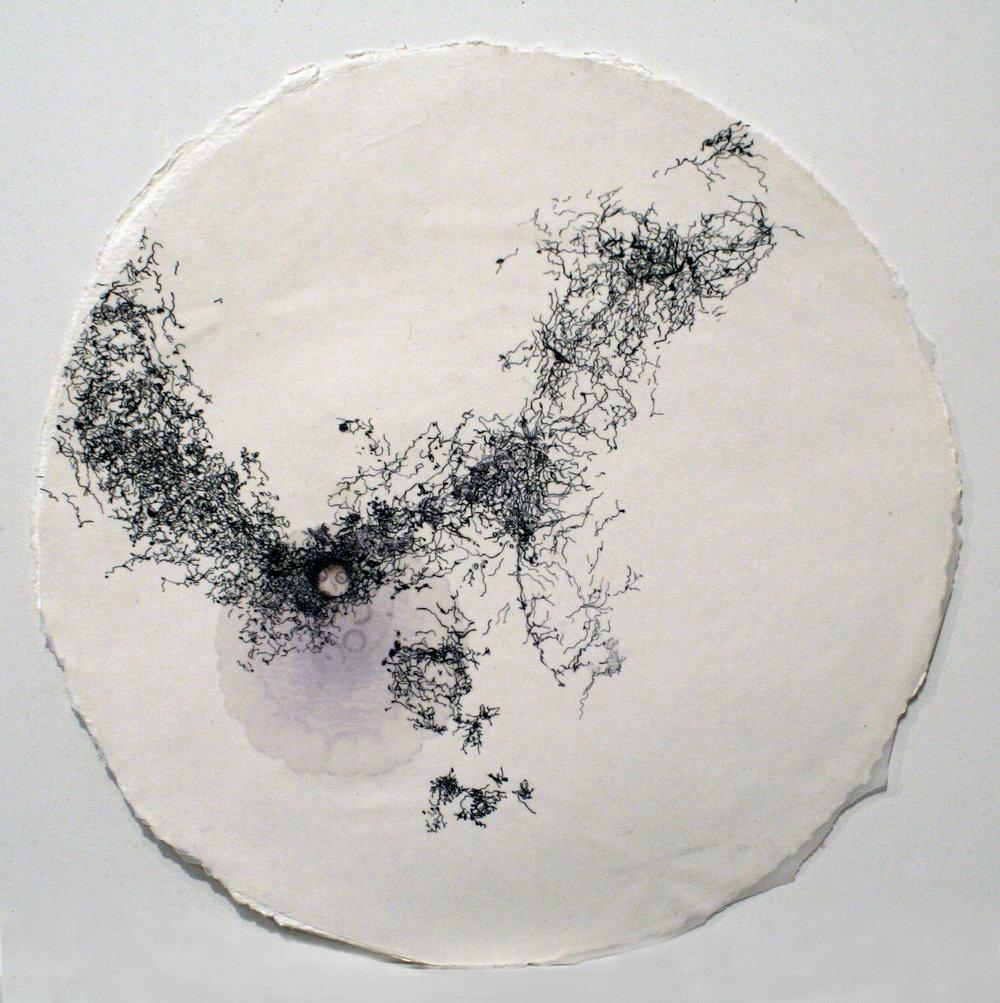 "92109 (Ménerbes)   mixed media on paper  16""diameter  2009"