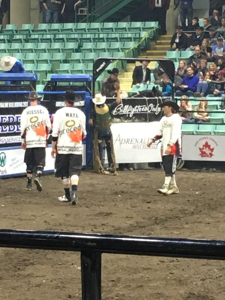 bullfighters.jpeg
