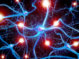 What if we could control how and when every synapse in the brain fired?