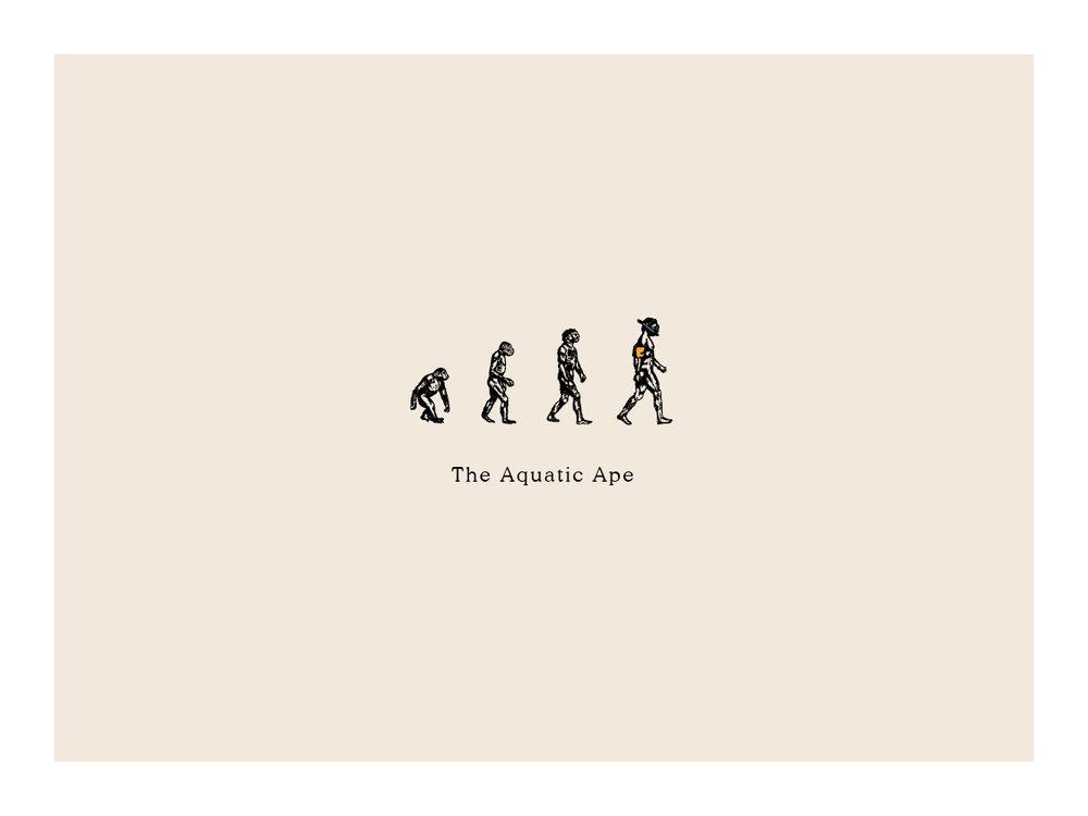 the-aquatic-ape-logo.jpg