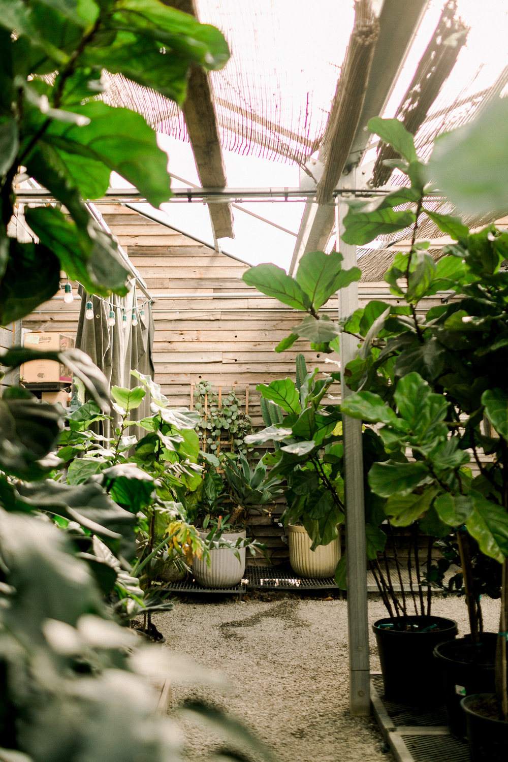 Terrain-Cafe-Greenhouse-Wedding-Venue-Philadelphia-Mary-Kate-Steele-Photography