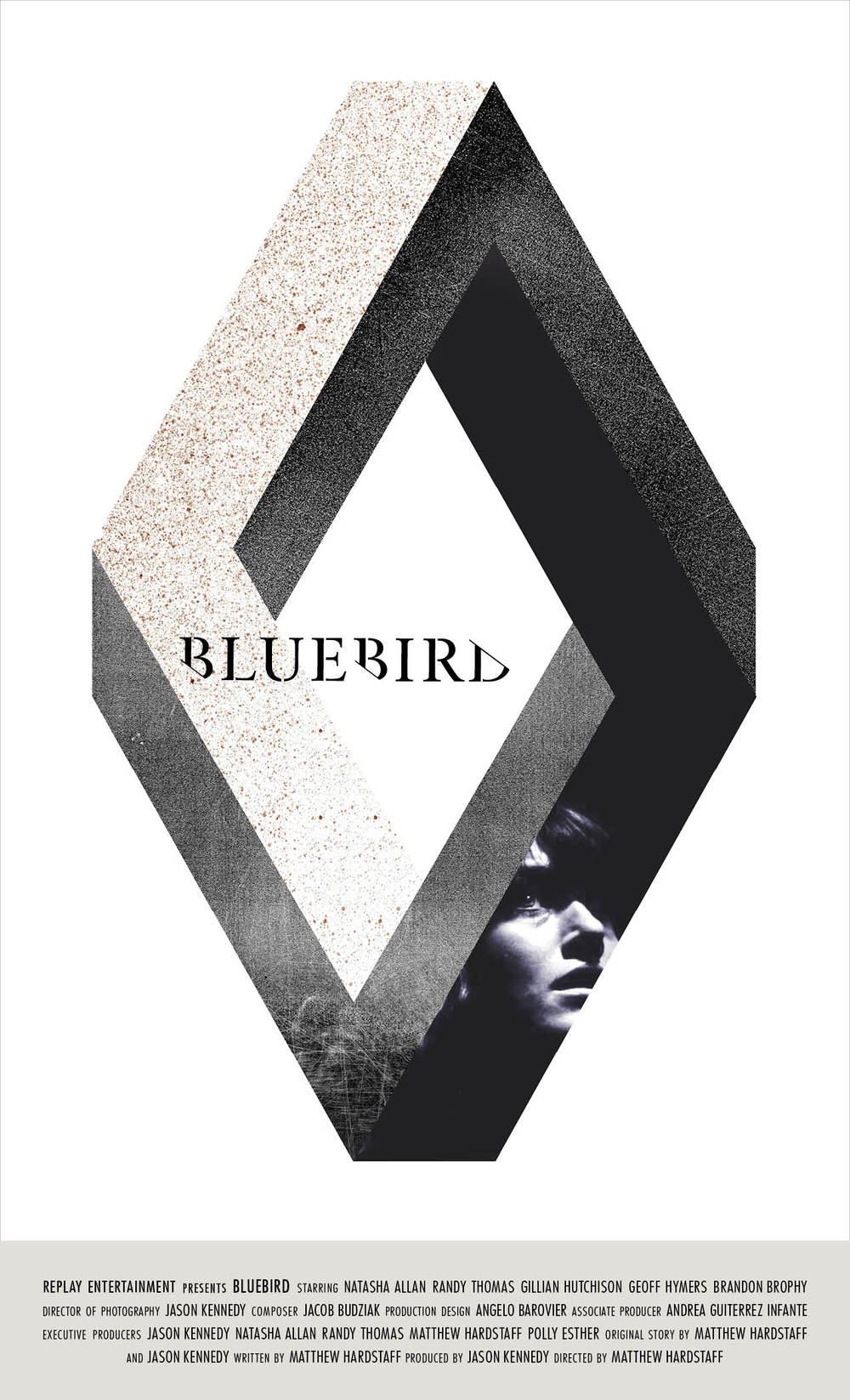 bluebirdposter.jpg