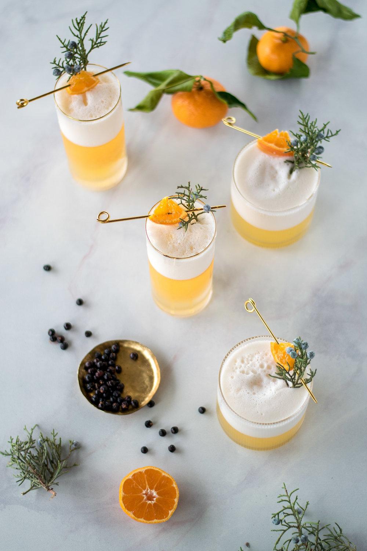 Juniper + Tangerine Gin Fizz | All Purpose Flour Child