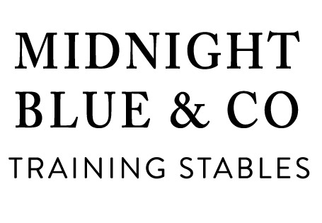 Midnight Blue & Co Training Stables
