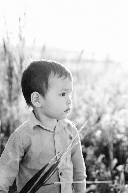 utahfamilyandchildrenphotography