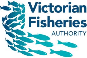 VFA---Partner-Logo.jpg