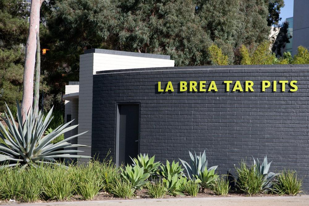 La Brea Tar Pits / Los Angeles, CA / img cred: Kara McCulloh