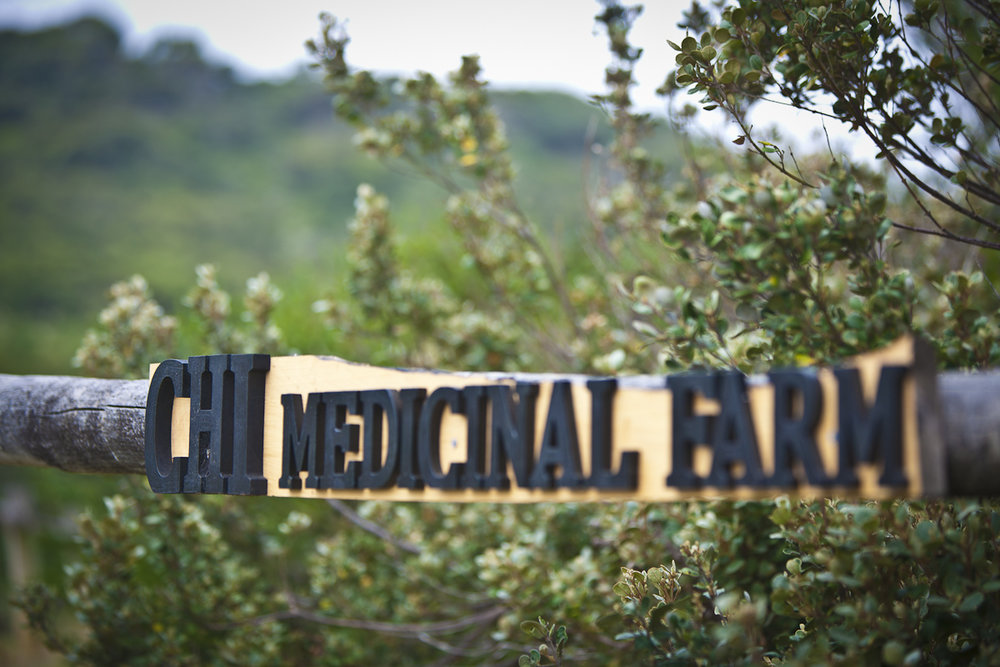 Welcome to Chi Medicinal Farm | Chi Kiosk | Chi B&B Guesthouse