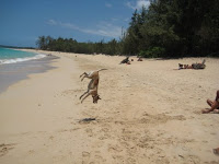 Dog doing flips over Maui Hawaii beach!