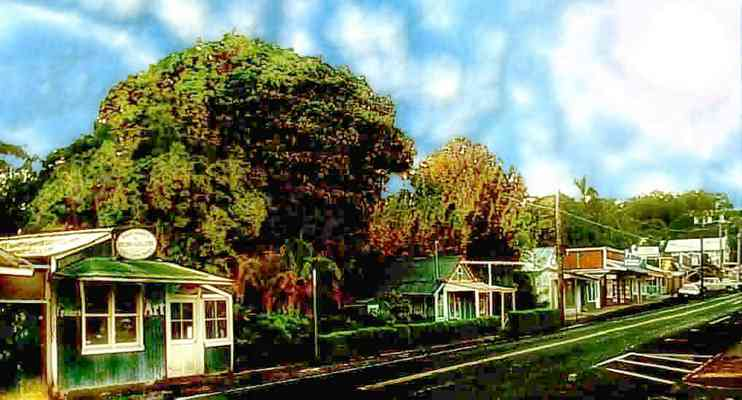 Makawao Town in upcountry Maui Hawaii