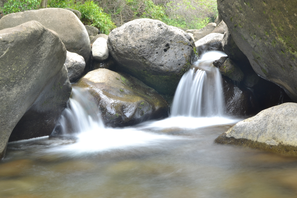 A Maui hawaii stream