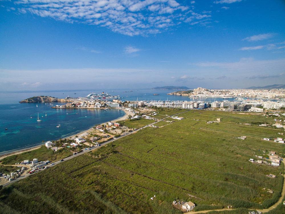 FOS Drinks fos The Focus Drink fos BCAA CrossFit BellMondo Ibiza Energy Energydrink Koffein Gesund Erfolg Vitamine DJI_0007.jpg