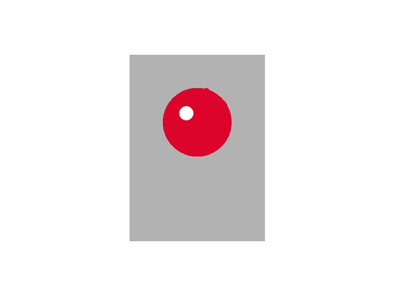 <Abbildung 1: TV Werk>