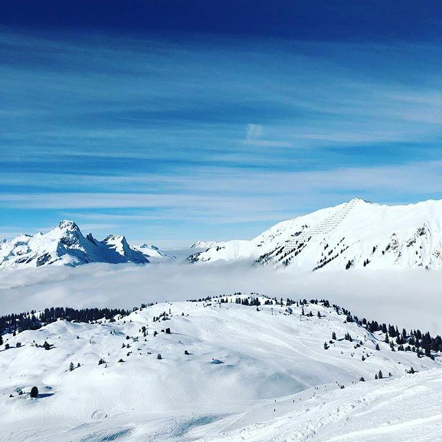 Hoffe Ihr hab einen ähnlich geilen #Montag ⛷ ☀️ #Skifahren #Powder 😉