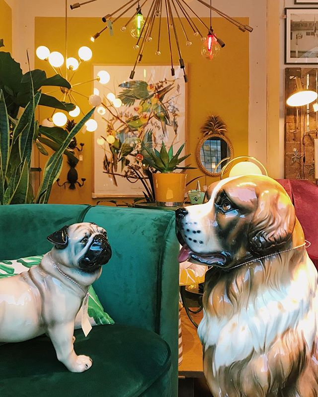 Who let the dogs out? 🐶 Today we're open til 18, welcome by the store!  #dogs #vintagehome #vintageinterior