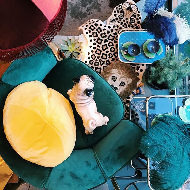 From the top the carpets are looking back at you! Animal-carpets among other things are currently on our pre-renovation sale, with 20% of the regular price. Today we're open until 18, welcome by the store!  #vintagehome #vintageinterior #vintageinteroirdesign #carpetinspiration #velvetchair #tiger #lion #frenchbulldog