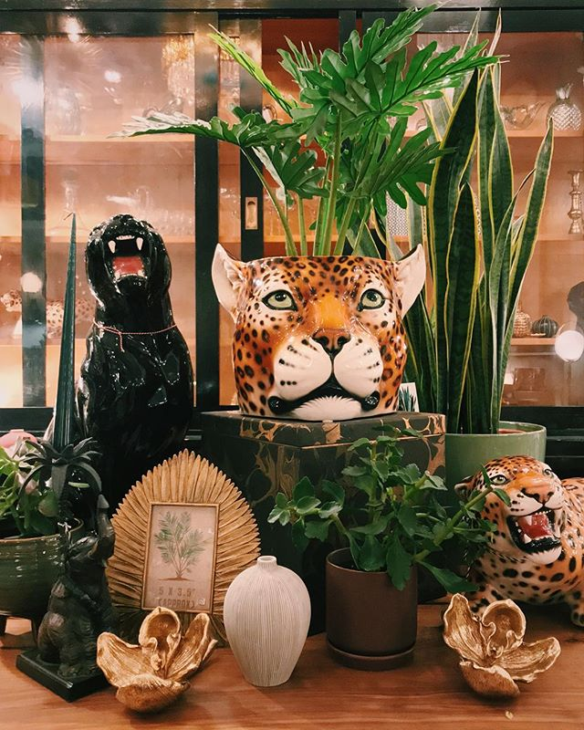 Jungle vibes in store! Come by for closer look at our large ceramic cats, today we're open to 18!  #vintagehome #vintageinterior #interiordesign #interior  #interiorinapiration #walnuttable #tiger #panther #jungle #tablesetting