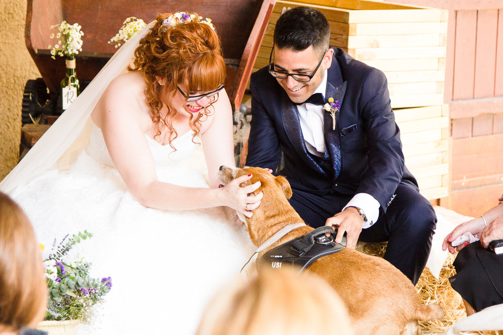 boda-el-mas-de-can-riera-photografeel-bodas-50.jpg