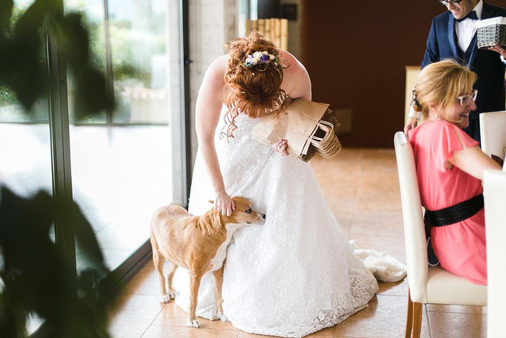 boda-el-mas-de-can-riera-photografeel-bodas-80.jpg