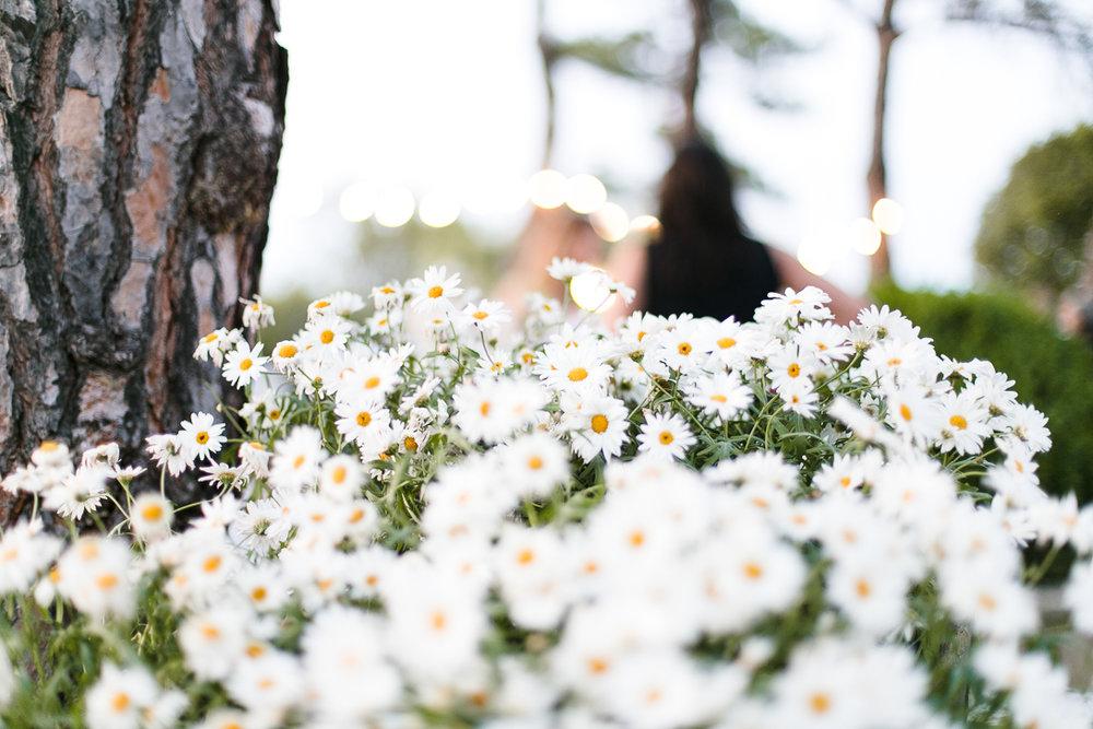 Boda-natural-el-cim-photografeel-73.jpg
