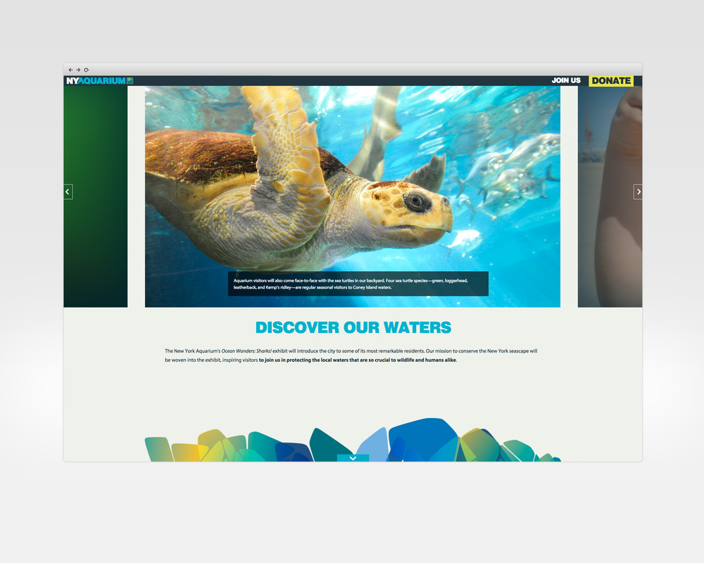 ny aquarium   design, ux, development   Microsite for the NY Aquarium's rebuilding & transformation campaign.   View Project