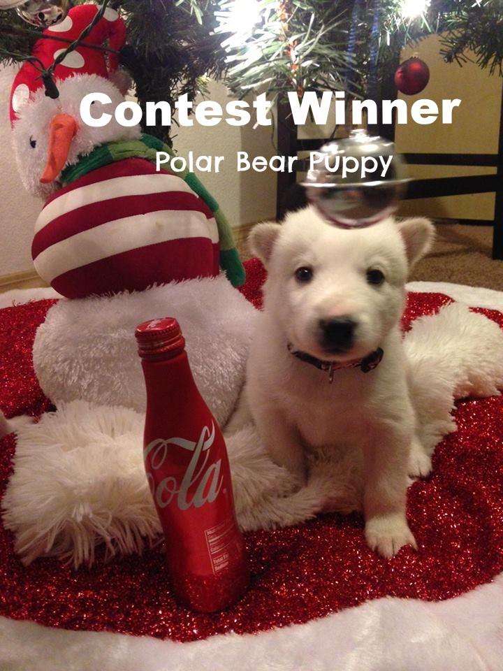 coke puppy.jpg
