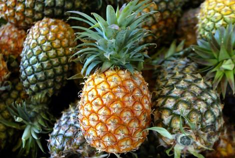 pineapples1.jpg