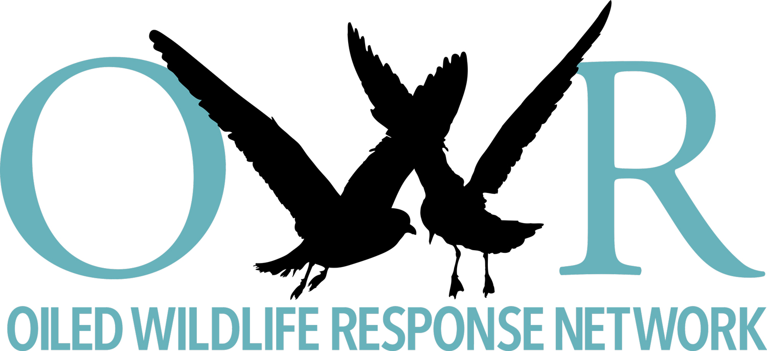Oiled Wildlife Response Network