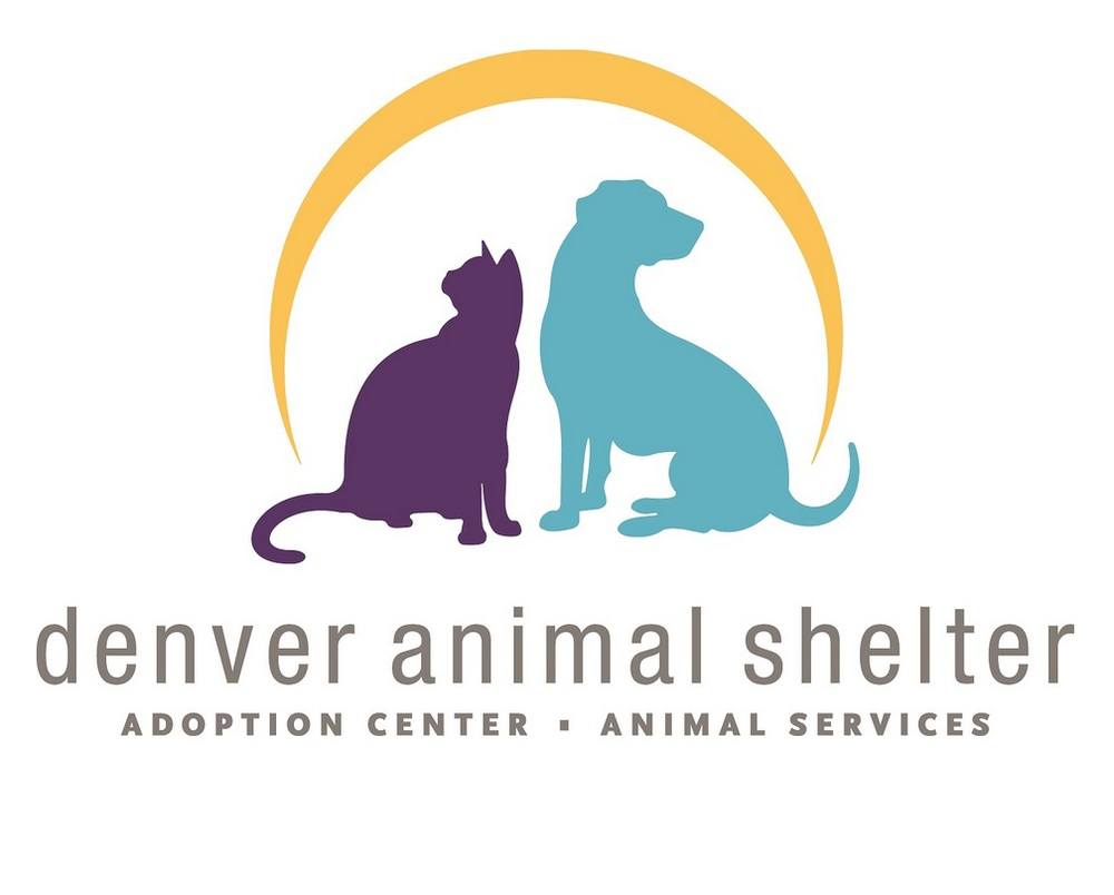 denver animal shelter.jpg