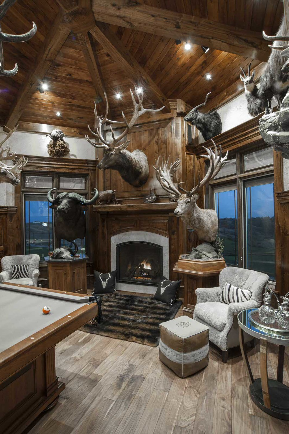 Trophy Room Design Ideas