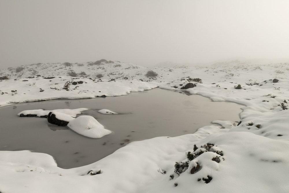 frostscape_gallery_ts17_004.jpg