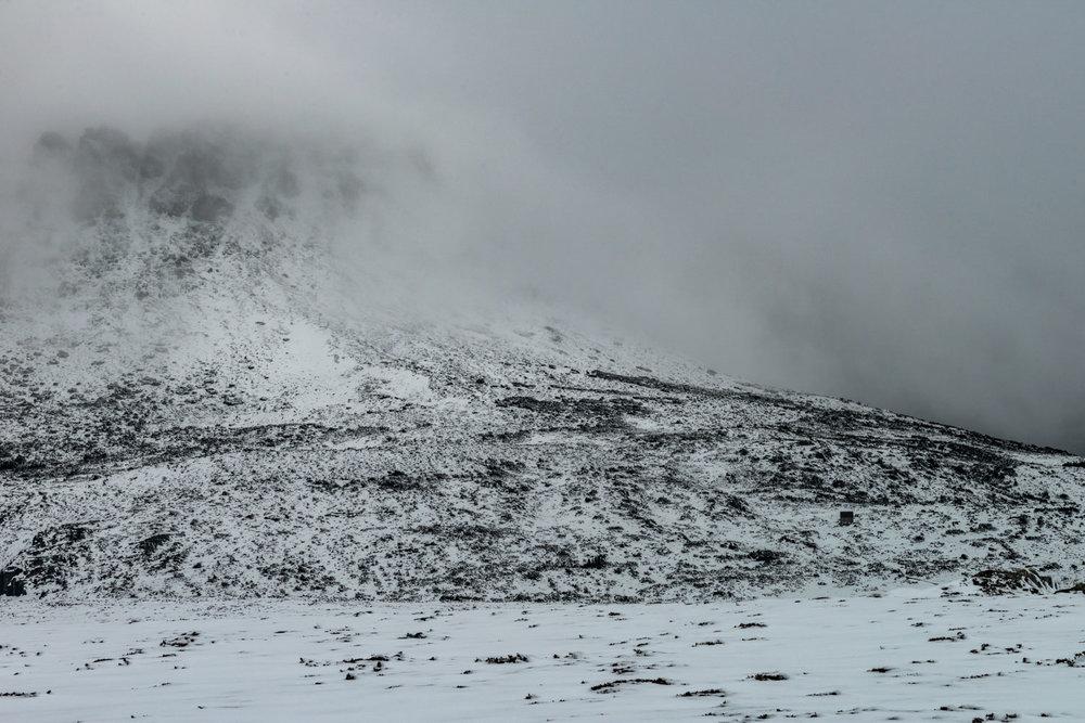 frostscape_gallery_ts17_005.jpg