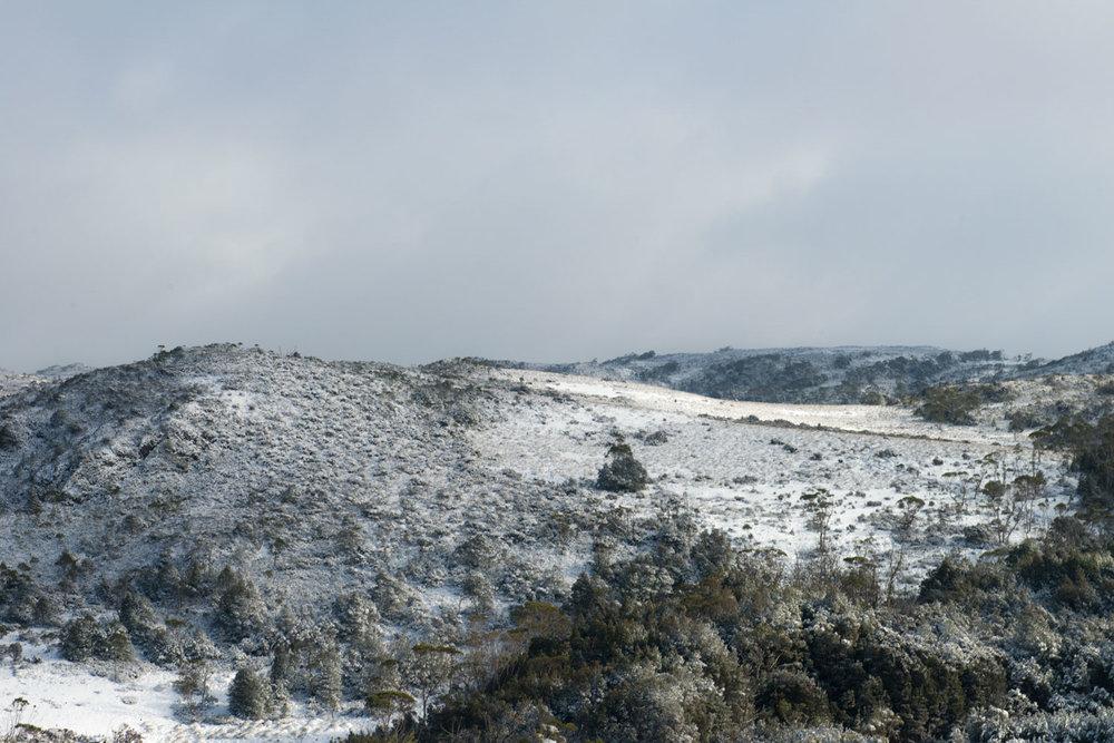 frostscape_gallery_ts17_011.jpg
