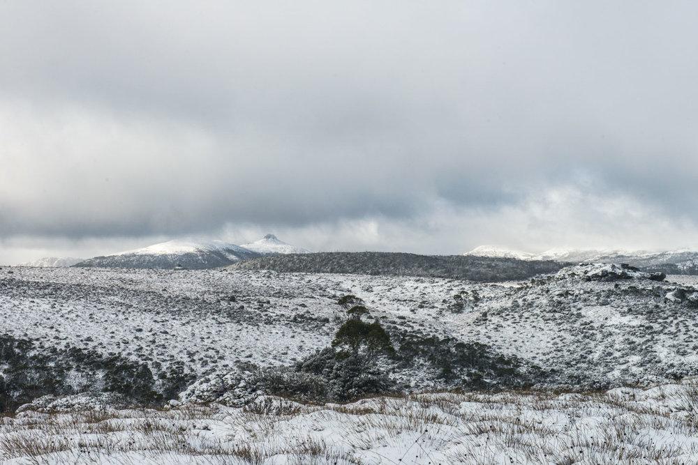 frostscape_gallery_ts17_010.jpg
